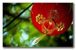 Gong Xi Fa Cai Imlek HD Wallpaper