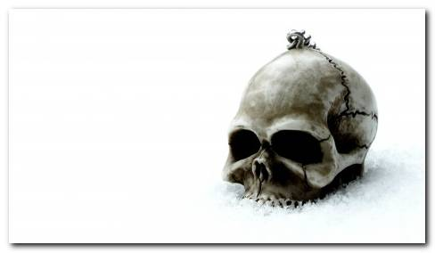 Gothic Skull Skulls Dark Wallpaper