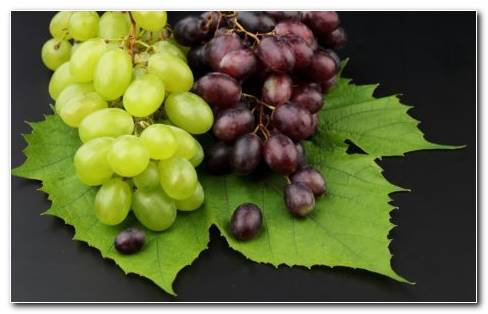 Grapes Fruit HD Wallpaper