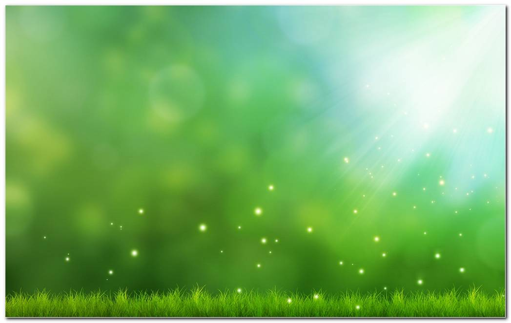 Green Background Pictures Wallpaper
