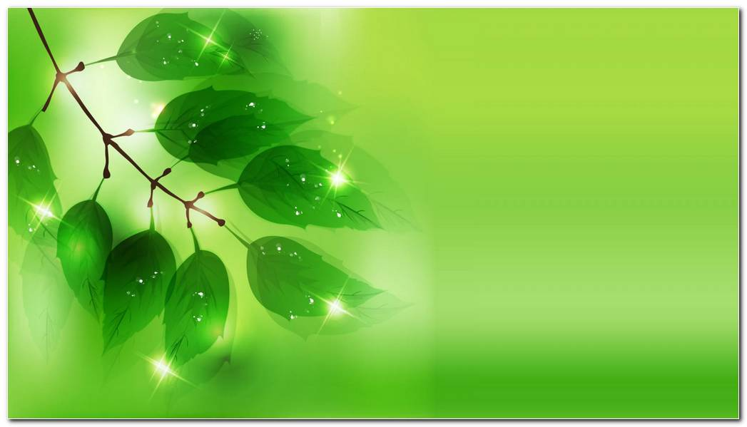 Green Background Vector Wallpaper