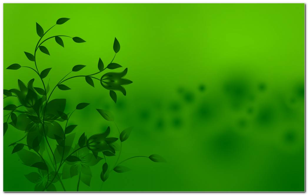 Green Background Wallpaper Simple