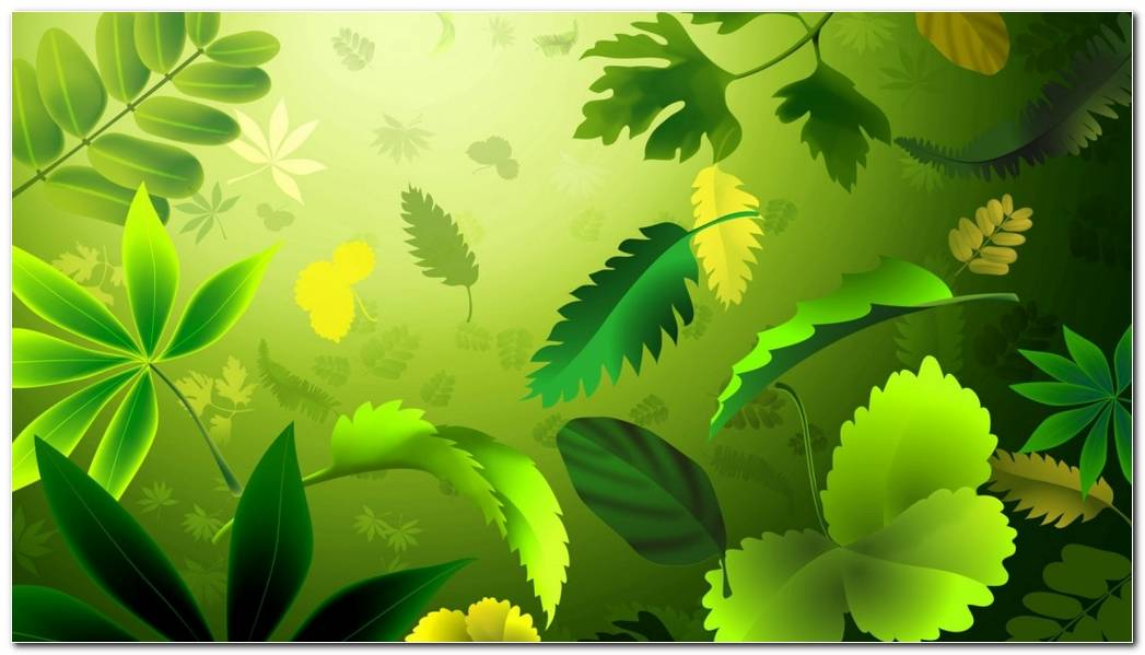 Green Background Wallpaper. Green Leaves