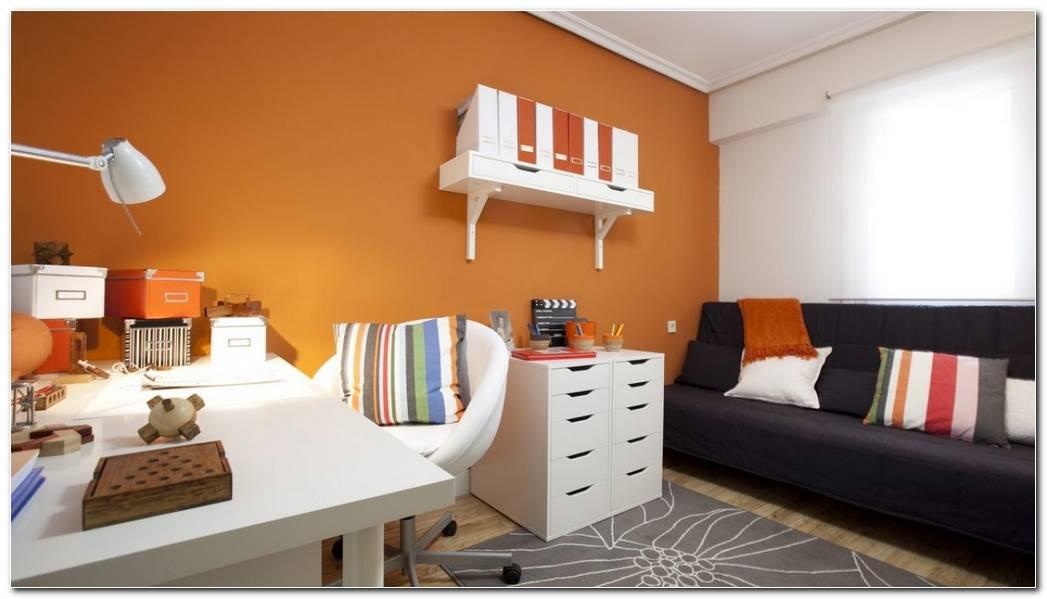 Habitacion Estudio Con Sofa Cama