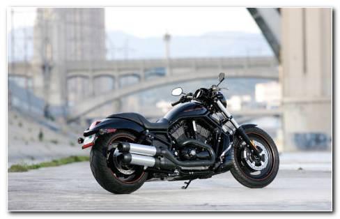 Harley Davidson on road HD wallpaper