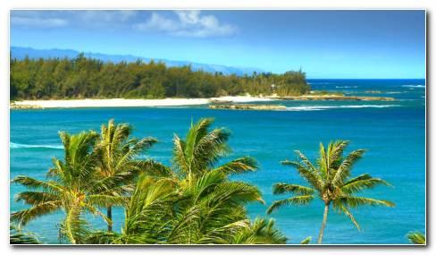 Hawaii Beaches HD wallpaper