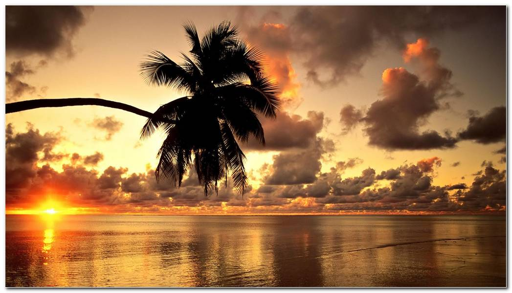 Hawaii Sunset Nature Wallpaper Background