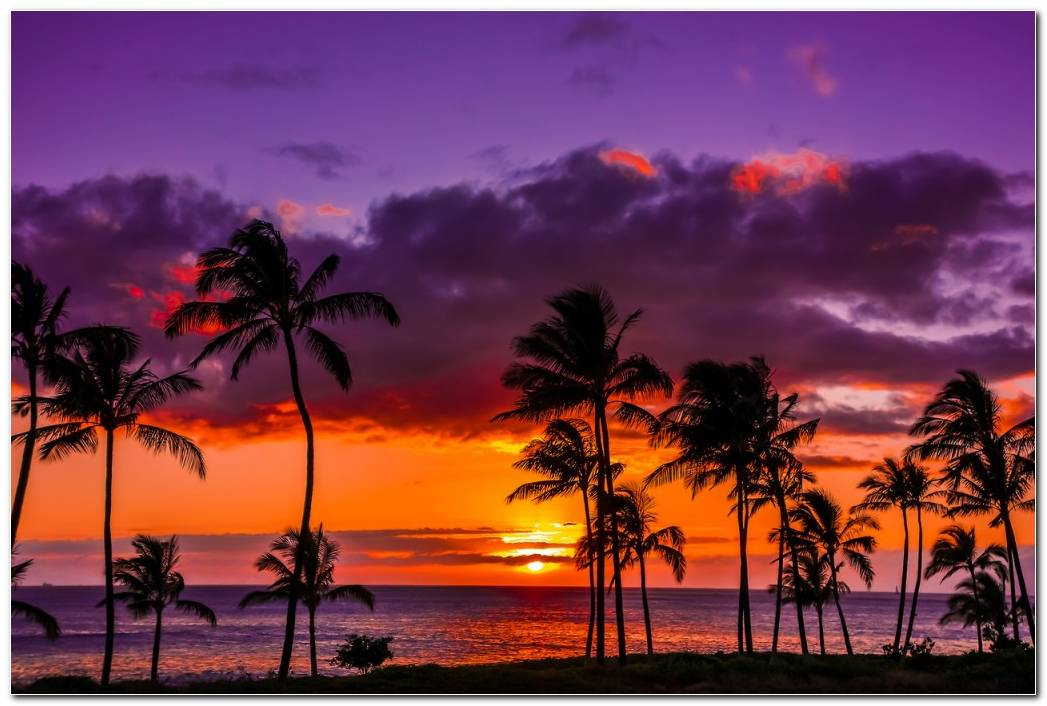Hawaii Vacation Sunset Nature Wallpaper Background