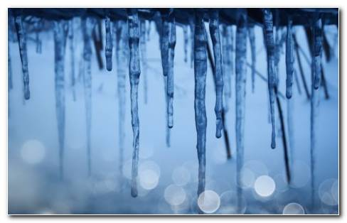 Icicles HD Wallpaper