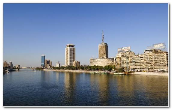Image Cairo City Daytime Urban Area Capital City