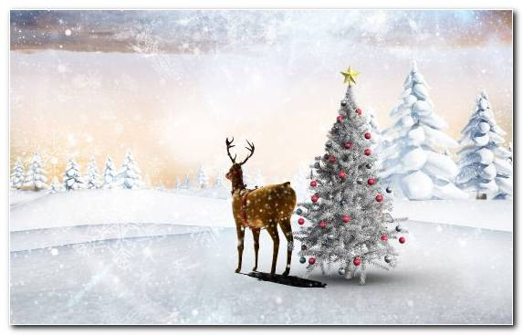 Image Christmas Day New Year Tree Santa Claus Winter Christmas Tree