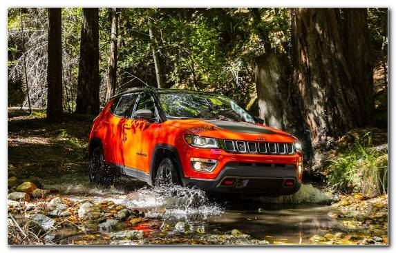 Image Chrysler Off Roading Plant Jeep Tree