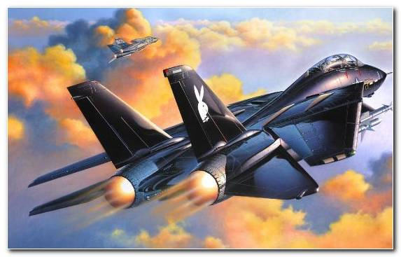 Image Grumman Air Travel Aviation F14 Tomcat Military Aircraft