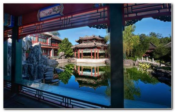 Image Jigsaw Puzzles Forbidden City plant reflection house