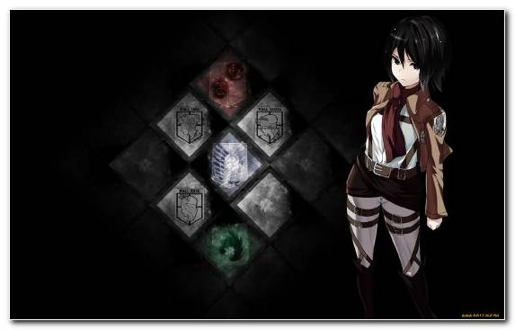 Image Levi Mikasa Ackerman Attack On Titan Anime Eren Yeager