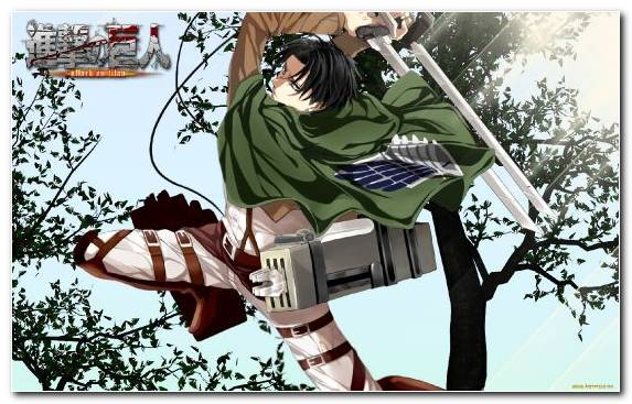 Image Levi Illustration Tree Fictional Character Mikasa Ackerman