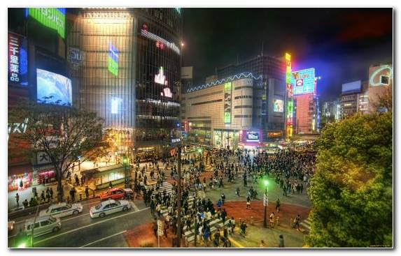 Image Tokyo City Capital City Tokyo Tower Urban Area Metropolis