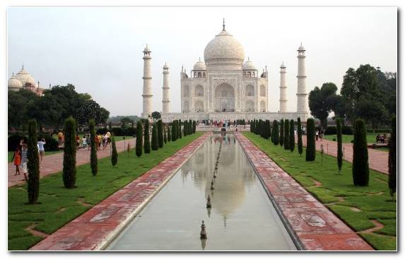 Image Wonders Of The World Tree Monument Taj Mahal Place Of Worship