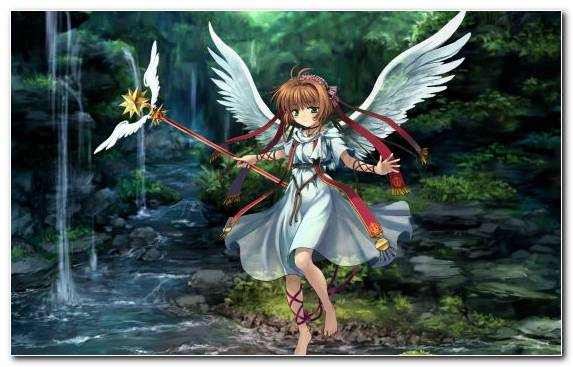 Image Adventurer Sakura Haruno Cardcaptor Sakura Tree Clow Reed