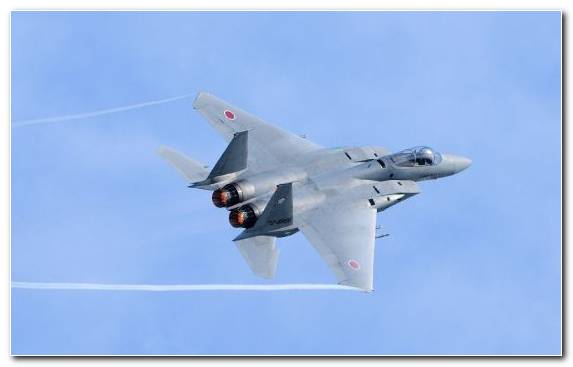 Image Air Force Jet Aircraft Grumman F 14 Tomcat Boeing F A 18E F Super Hornet Mikoyan Mig 29