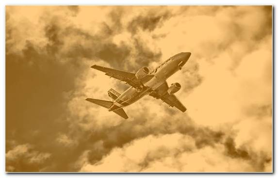 Image Air Travel Airliner Flight Daytime Boeing 737