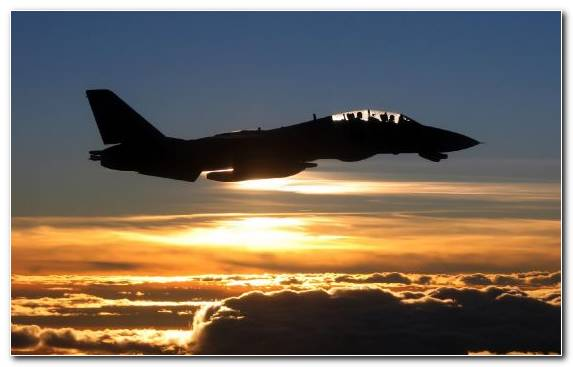 Image Air Travel Airplane Grumman F 14 Tomcat Military Aircraft McDonnell Douglas F A 18 Hornet