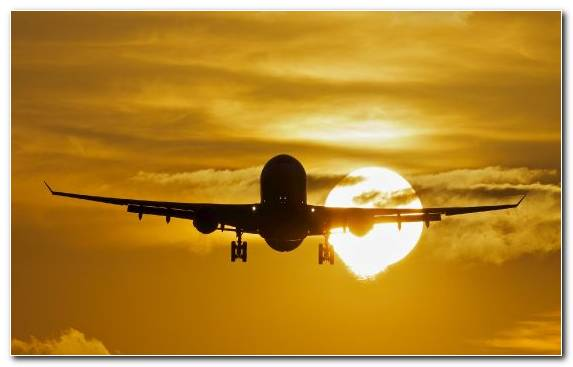 Image Airbus A330 Airline Aviation Daytime Airbus A380