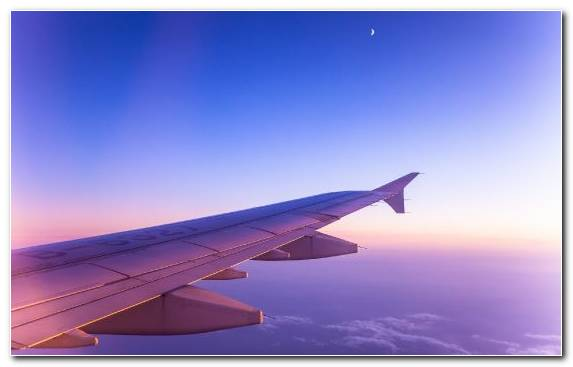 Image Airplane Airline Aviation Sky Air Travel