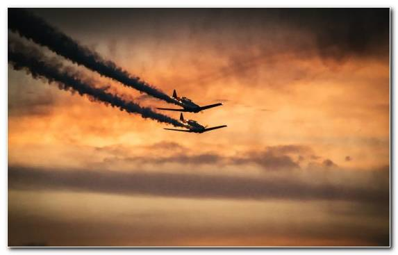 Image Airplane Sunset Sunrise Atmosphere Cloud Sunset
