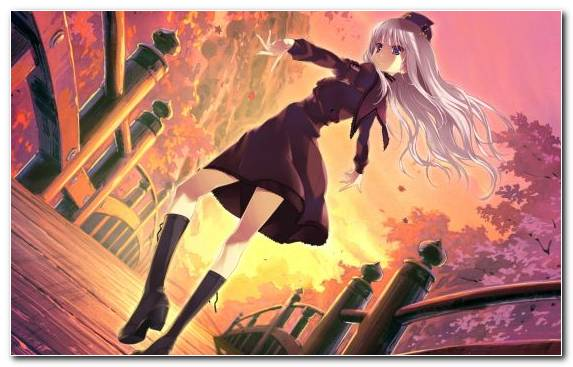 Image Animation Illustration Girl Manga Illustrator