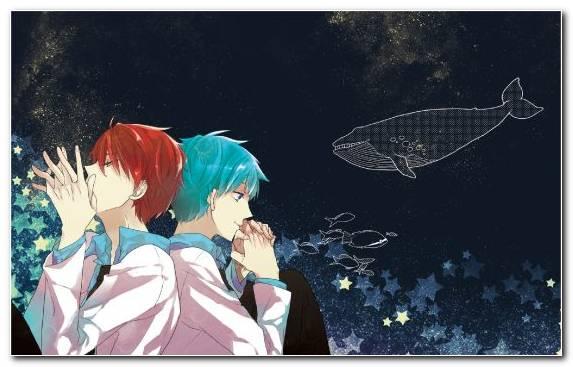 Image Anime Illustration Art Tetsuya Kuroko Graphics