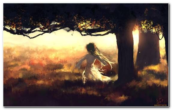 Image anime landscape bunches tree sunlight