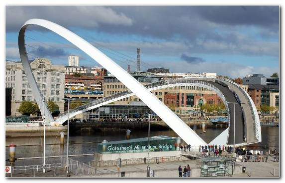 Image Arch Bridge Cable Stayed Bridge Copenhagen Gateshead Millennium Bridge Bridge