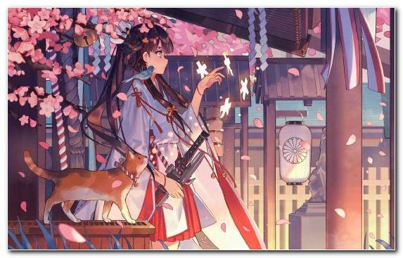 Image Art Anime Cherry Blossom Kimono Performance