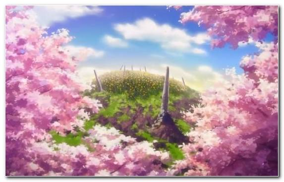 Image Art Anime Flower Sky Plant