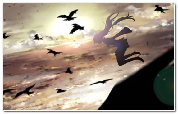 Image art girl crow creative arts anime