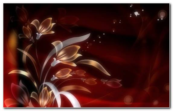Image Art Petal Flowering Plant Plant Graphics