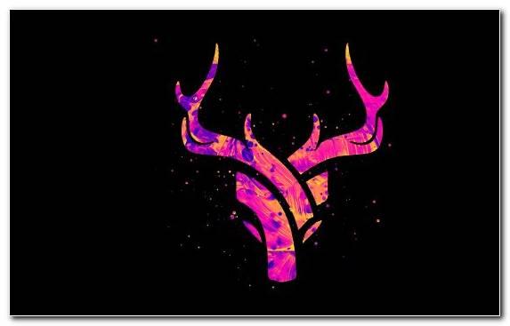 Image Art Visual Arts Black Pink Artist