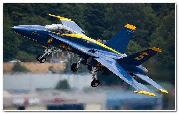 Image Aviation Airplane Aircraft Monoplane Blue Angels