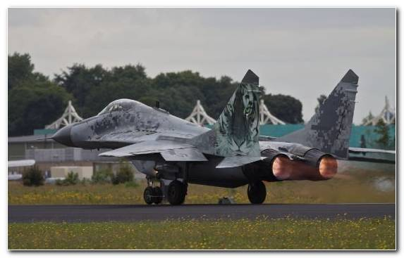 Image Aviation Wing United States Air Force Mikoyan Mig 29 Jet Aircraft
