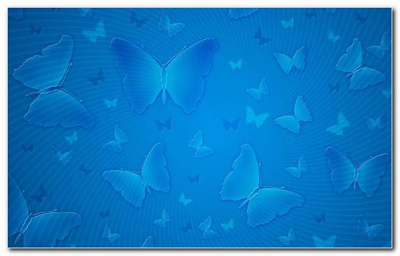 Image Azure Underwater Aqua Fish Ecosystem