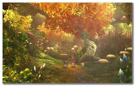Image Biome Video Games Nature Vegetation Forest