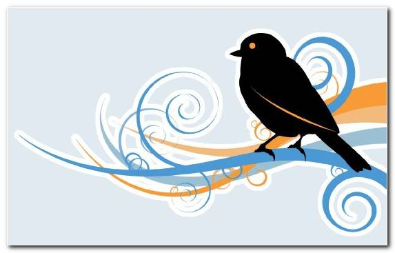 Image Bird Beak Graphic Design Blue Black