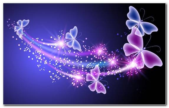 Image Blue Butterfly Violet Flower Moths And Butterflies