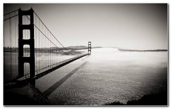 Image Bridge Fog Atmosphere Mist Morning