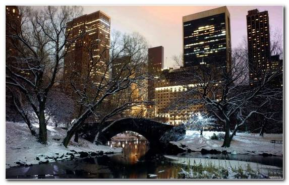 Image Building Water Central Park Night Freezing