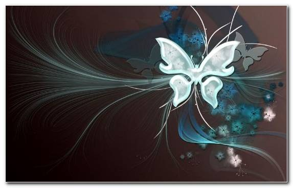 Image Butterfly Graphic Design Vector Graphics Blue Creative Arts