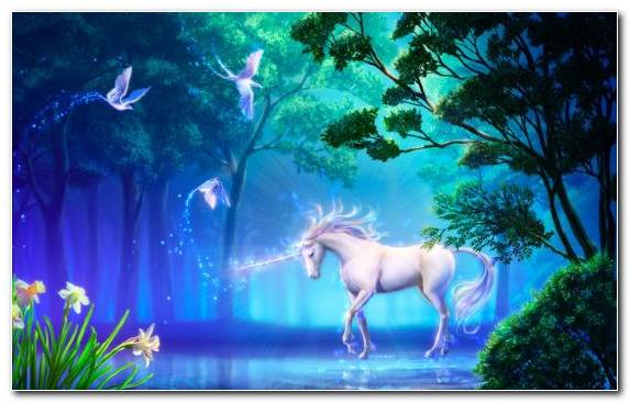 Image Canvas Nature Grass Enchanted Forest Mythical Creature