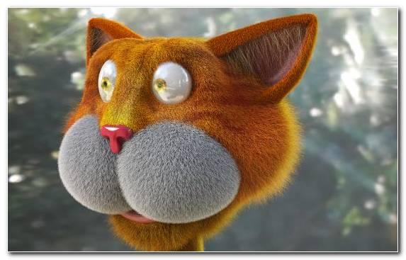 Image Cat Snout Wildlife Fur Fauna