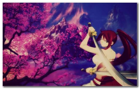 Image Cherry Blossom Spring Sky Art Painting